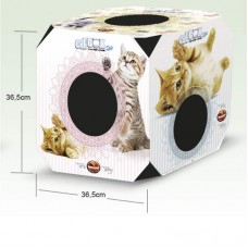 38742 - CAT BOX FILHOTE FURACAOPET
