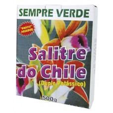 2297 - ULTRA VERDE SALITRE DO CHILE CX500G(0167)
