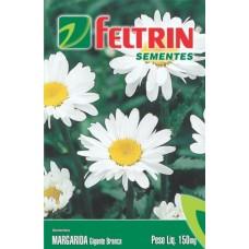 1074 - SEM.FELTRIN MARGARIDA GIG.BRANCA C/20